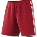 GPS MA EDL Boston Red Short