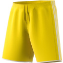 GPS MA EDL Central Yellow Short