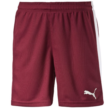 Puma Pitch Shorts