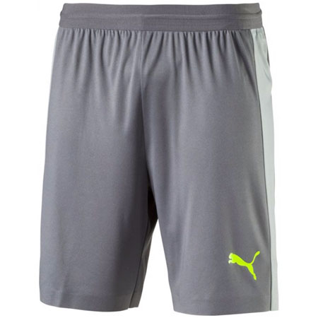 Puma EVOTRG Tech Shorts