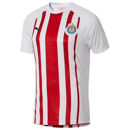 Puma Chivas Fan Training Tee