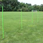WGS Natural Grass Coaching Stick Set (4 piece set)