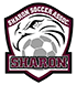 Sharon Youth Soccer